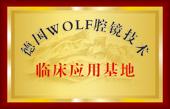 德国wolf腔镜技术临床应用基地
